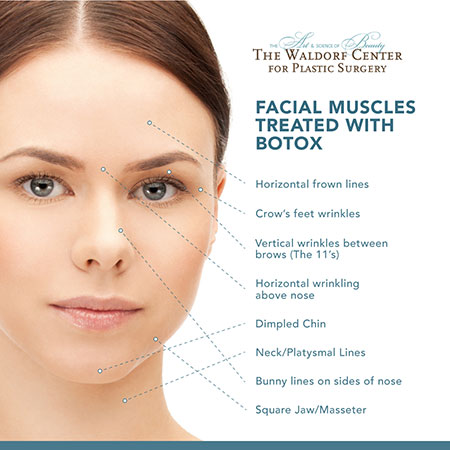 Portland's Waldorf Center for Plastic Surgery uses BOTOX® for a range of cosmetic applications on the face and neck.